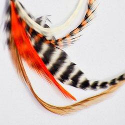 画像1: Pet Plume Originalシリーズ Orange